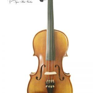 đàn violin beginner 2