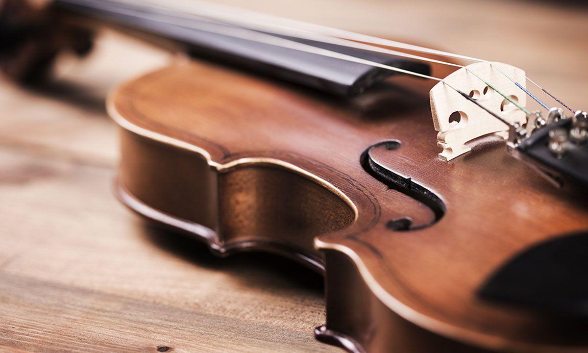 cách chọn violin