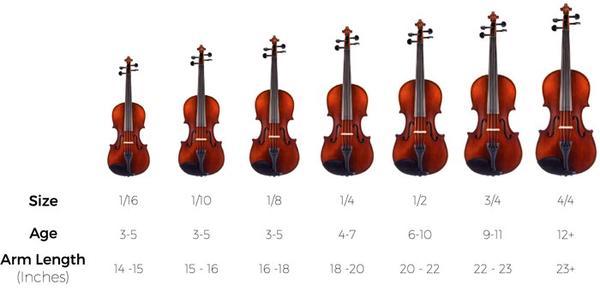 đàn violin được  phân theo kích thước