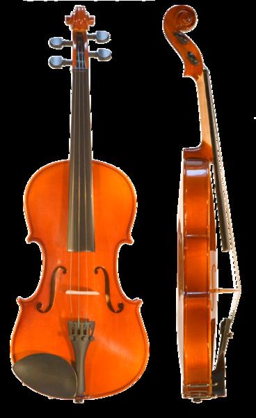 đàn vi ô lông