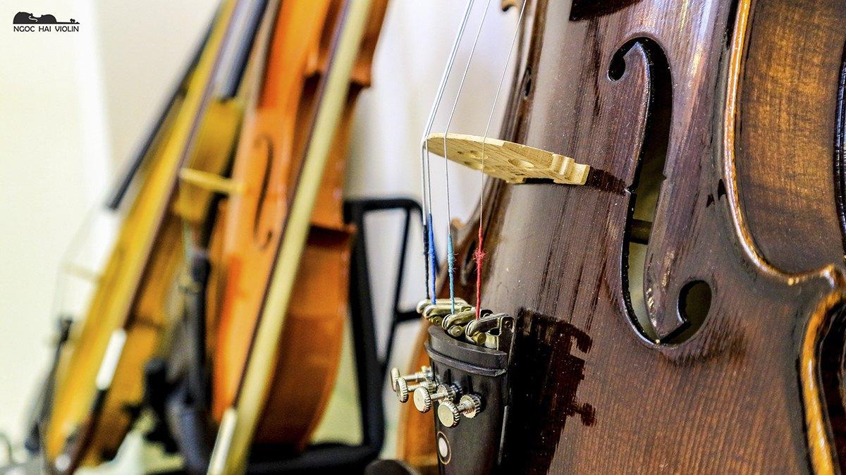 hinh shop violin