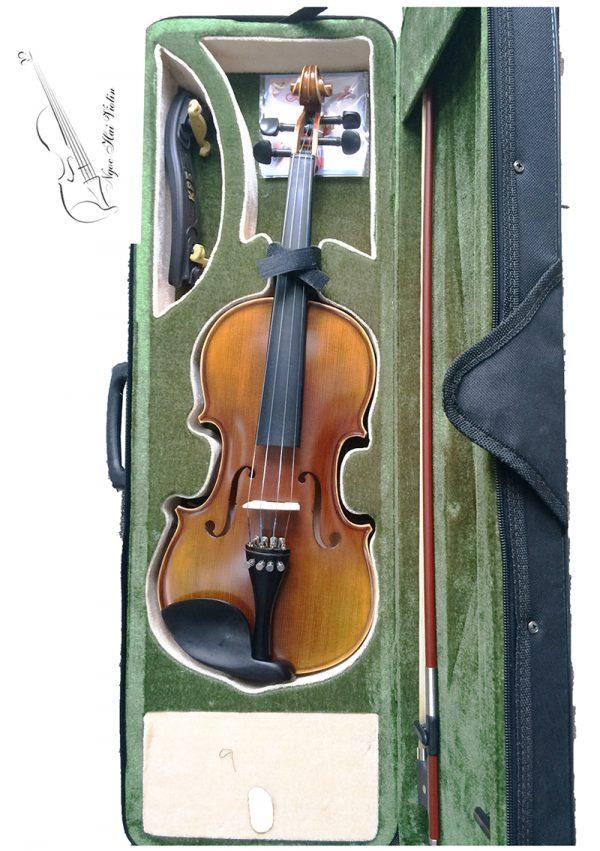dan violin beginner 2-3