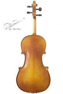 dan violin beginner 2-4