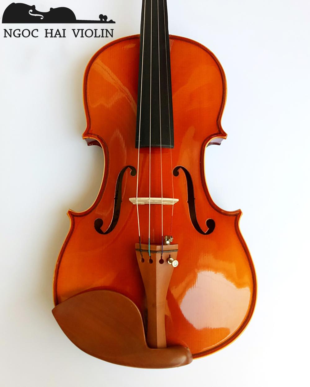 mua violin ở tphcm